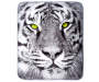 White Tiger Throw silo front